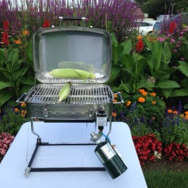 Stainless Steel RVAD 650 LP Gas Grill